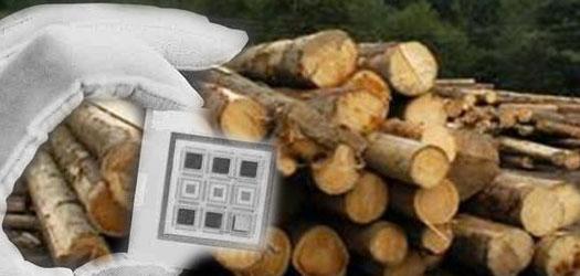 электронный учет дерева с помощью чипов