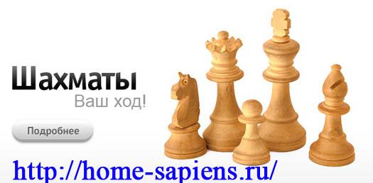 шахматная игра в умном доме