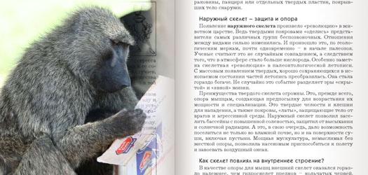 бабуин читает книгу